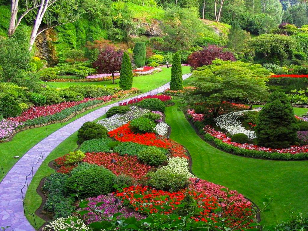 Landscape gallery dc landscape design for Garden design ideas brisbane